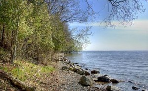 lemoine Point nature walk Kingston